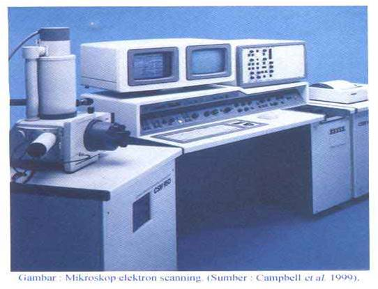 Perkembangan mikroskop sebagai penemu sejarah mikrobiologi pondok ilmu