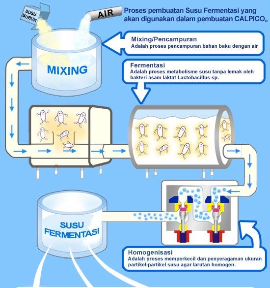 Pemanfaatan mikroorganisme di bidang pangan berbasis bioteknologi proses pembuatan yoghurt melalui teknik homogenasi ccuart Choice Image