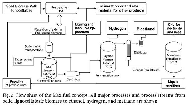 Pemanfaatan saccharomyces cerevisiae dalam industri alkohol pondok lebih ccuart Choice Image