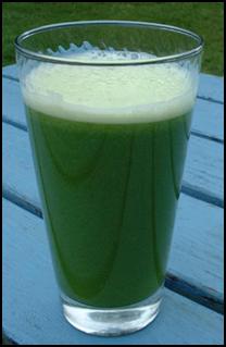 cara mengkonsumsi daun binahong untuk síntomas de diabetes